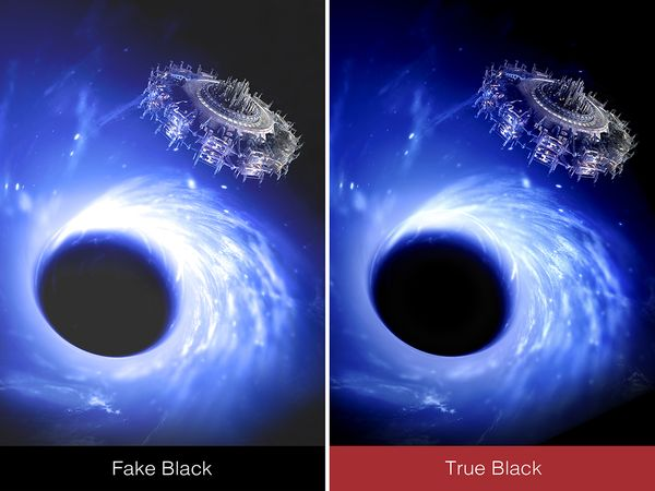 TRUE-BLACK.jpg
